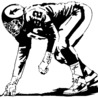 NFL & NCAA Football News