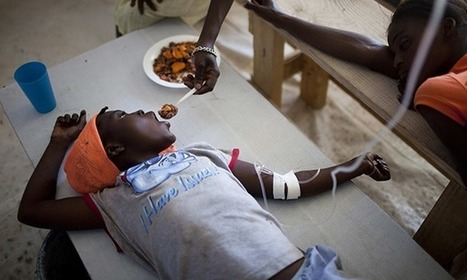 Haitian families to sue UN for compensation over cholera deaths - The Guardian | Human Rights | Scoop.it