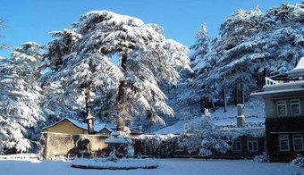 Best Kashmir Holiday Tour Trip Travel Package- Shine India Trip   kashmir tour apckage   Scoop.it