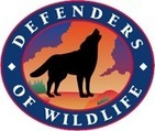 Email - eNews: Stop the Contracted Wolf Killing in Idaho - Defenders of Wildlife Action Alert | email | Scoop.it