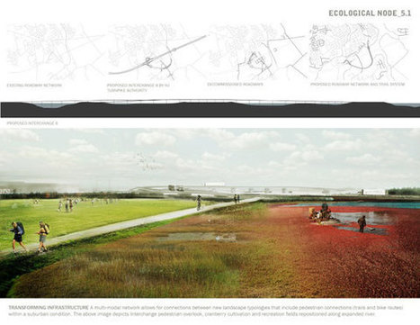 Dendritic Zoning | New Jersey USA | ATLAS lab « World Landscape Architecture – landscape architecture webzine | Urban Choreography | Scoop.it