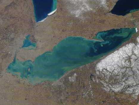 [Pollution] Le lac Érié envahi par des particules de plastique | Toxique, soyons vigilant ! | Scoop.it
