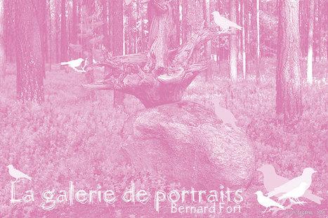 Portraits d'oiseaux. Exposition au jardin | Grand Parc Miribel Jonage | DESARTSONNANTS - CRÉATION SONORE ET ENVIRONNEMENT - ENVIRONMENTAL SOUND ART - PAYSAGES ET ECOLOGIE SONORE | Scoop.it