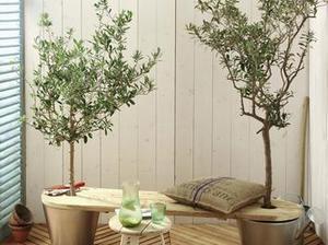Réaliser un #banc de #jardin à la touche verte #idée #DIY #déco | Best of coin des bricoleurs | Scoop.it