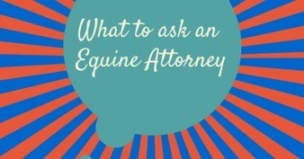 """What to ask an Equine Attorney. You never know when it will happen, but when it does...What do you need to know?"" 