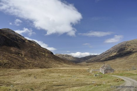 DSC3613.jpg (1200x797 pixels)   West Highland Way   Scoop.it