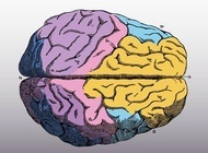 Can Neuromarketers Really Peer Into Your Subconscious? They Say They Can. | psychology | Scoop.it