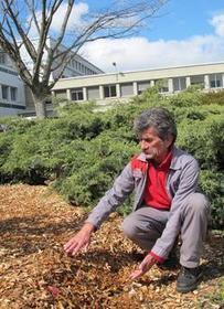 Réapprendre à désherber sans produits chimiques | pour mon jardin | Scoop.it