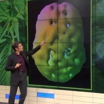 Dr. Oz Brings Reefer Madness Back to Daytime Television | Cannabis News | Scoop.it