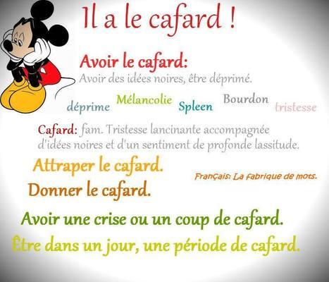 Avoir le cafard | Fle | Scoop.it