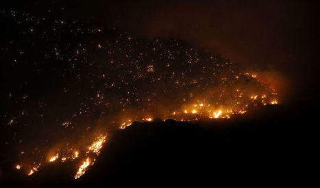 Fire on the mountain will make forest healthier | Arizona Daily Star | CALS in the News | Scoop.it