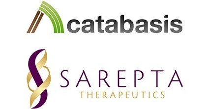 Catabasis Pharmaceuticals & Sarepta Therapeutics Announce a Joint Research Collaboration in Duchenne | Duchenne Muscular Dystrophy Research | Scoop.it