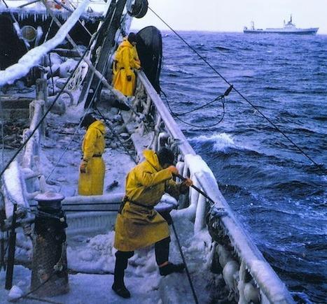 La pêche à Terre Neuve, un patrimoine disparu | J'écris mon premier roman | Scoop.it