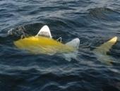 Des robots-poissons pour détecter la pollution dans les ports | Civilisation 2.0 | Scoop.it
