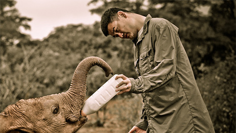 VIDEO/PHOTOS: Yao Ming's wild, heartbreaking African adventure | What's Happening to Africa's Rhino? | Scoop.it