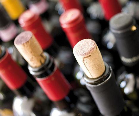 Festa dell'Olio e del Vino Novello | Wiilo | Wiilo a new city experience | Scoop.it