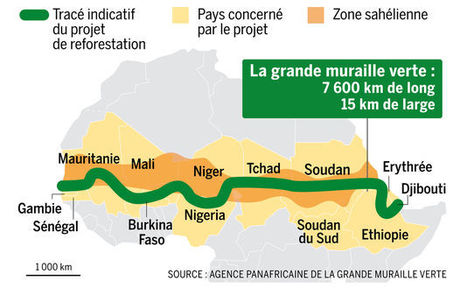 Cedeao / Ouagadougou : La communication à l'oeuvre pour ériger la Grande Muraille Verte - Médiaterre | Le Sahel, un espace instable | Scoop.it