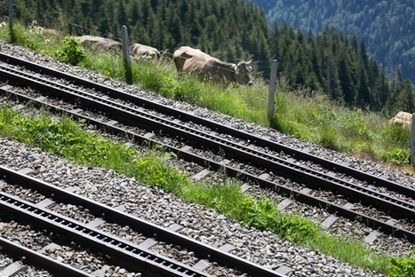 Le rail gagne des parts de marché dans les Alpes | SNOTPG - Site Non Officiel des tpg | Scoop.it