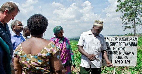 Smallholder Farmers Go Commercial in Tanzania | U.S. Department of State Blog | Southmoore AP Human Geography | Scoop.it