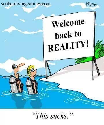 Reality!!   All about water, the oceans, environmental issues   Scoop.it