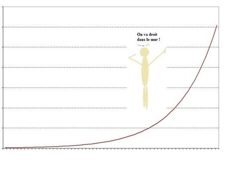 Croissance exponentielle: Les grains de blé et le jeu d'échecs | La peur exponentielle | Pierre Ratcliffe | Scoop.it