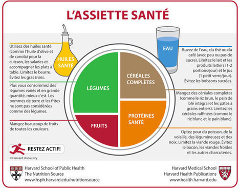 Un guide alimentaire indépendant | Health promotion. Social marketing | Scoop.it