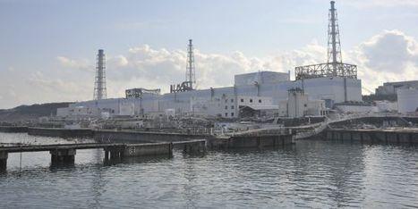 Deux mois après le tsunami, quelle est la situation à Fukushima ?   LeMonde.fr   Japon : séisme, tsunami & conséquences   Scoop.it