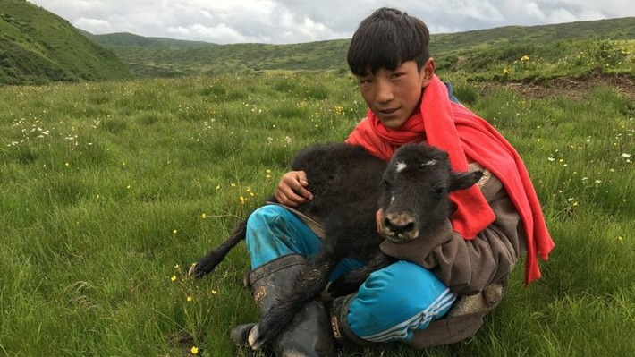 The Tibetan nomad traditions defying the modern world | BBC | Kiosque du monde : Asie | Scoop.it