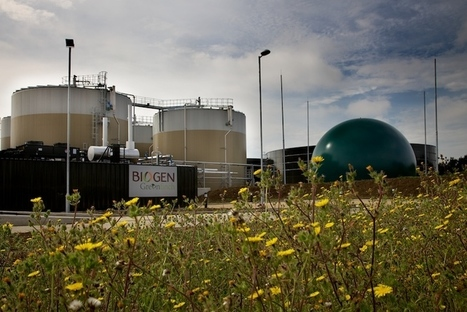Anaerobic Digestion of Food Waste - Cleantech Solutions | Algae | Scoop.it