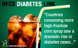 High-Fructose Corn Syrup Causing Diabetes, Citizen Eat 55 Lbs Per Year | Green Consumer Forum | Scoop.it