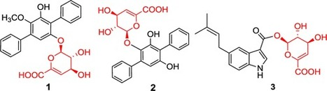 Terfestatins B and C, New p-Terphenyl Glycosides Produced by Streptomyces sp. RM-5–8   LGN   Scoop.it