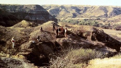 Le genre humain vieilli de 400.000 ans par le fossile d'une mâchoire | Think outside the Box | Scoop.it