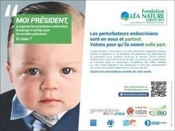 Moi Président: Campagne contre les perturbateurs endocriniens   Perturbateurs endocriniens   Scoop.it