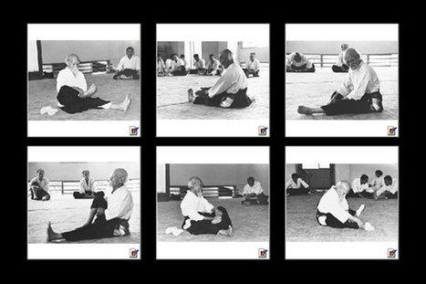 Stage di Aikido a Covolo di Pederobba: studio dell'Aikitaiso, lo shiatsu e il Do-in nell'Aikido - Aiwakan Aikido Treviso | Aikido: l'arte marziale dell'armonia | Scoop.it