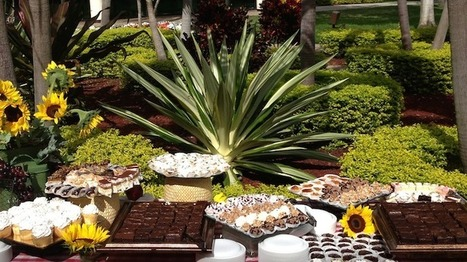 Catering Companies | Caterers in Miami, South Florida, & Boca Raton | Catering | Scoop.it