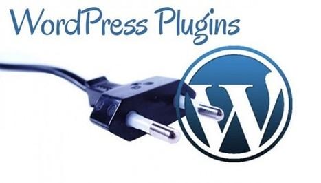 Narmadatech-WordPress Website Development | Narmadatech | Scoop.it