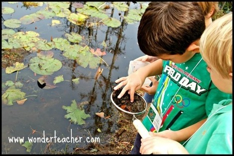 7 Ideas for Replacing Worksheets with Wonder | Critical and Creative Thinking for active learning | Scoop.it