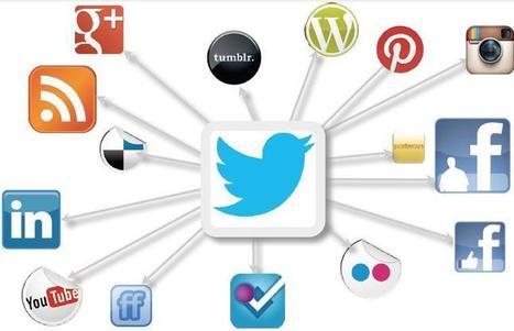 NetPublic » Qui êtes-vous dans les réseaux sociaux ? Présentation et méthodologie | Le monde est-il NET ? | Marc Cervennansky | Scoop.it