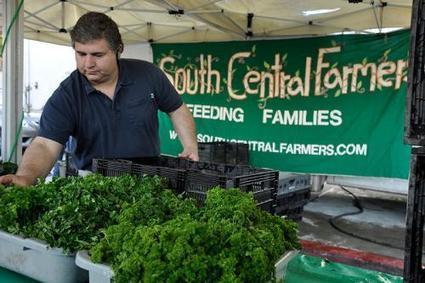 Growing Green Awards: Renewing Equity and Opportunity in the Local Food System | EcoWatch | Scoop.it