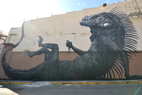 ROA in San juan (Pr) | What Surrounds You | Scoop.it