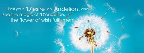 Andelion – What's in a Name? | Andelion | Scoop.it