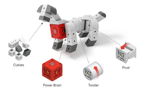 Internet's Best Secrets: TinkerBots - LEGO style modular robots on Indiegogo   Heron   Scoop.it