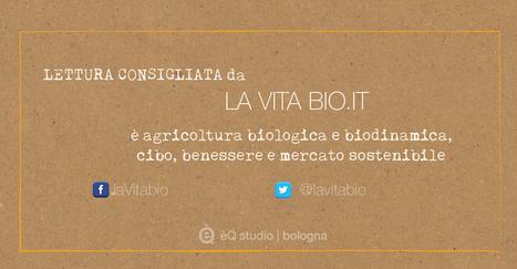 Agricoltura bio: l'11 agosto presentazione ricerche su frutta e vite | un mondo migliore | Fondazione Mach | Scoop.it