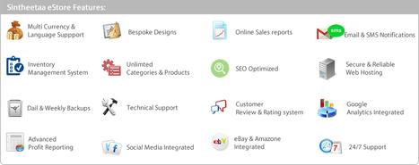 E-commerce Development - Sintheetaa Web Technologies | eCommerce site at just Rs.899 | Scoop.it
