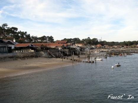 Promenade au Canon-Cap Ferret avec Faust'in, Pipelette bordelaise | Le Bassin d'Arcachon | Scoop.it