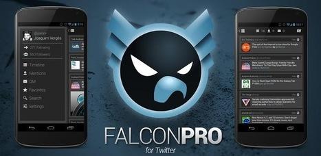 Guida per installare e utilizzare di nuovo Falcon Pro | Angariblog.net | AngariBlog | Scoop.it