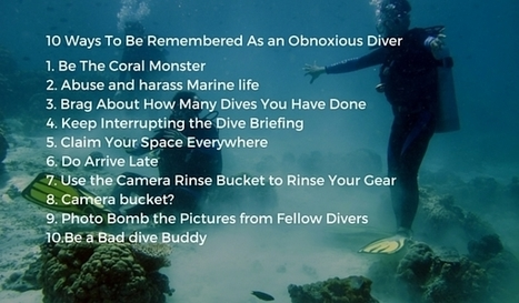 10 Ways To Be Remembered As an Obnoxious Diver | Bookyourdive | Scoop.it
