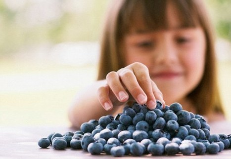 Can't get your kids to focus on homework? Give them blueberry juice | Kickin' Kickers | Scoop.it