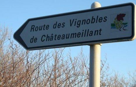 L'inconnu du Centre Loire : le vignoble de Châteaumeillant | Radio Campus Paris | Le vin quotidien | Scoop.it