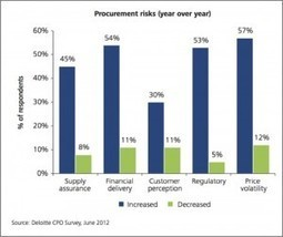 Procurement in 2020: Into the Risk Maelstrom - Spend Matters | Infographix! | Scoop.it
